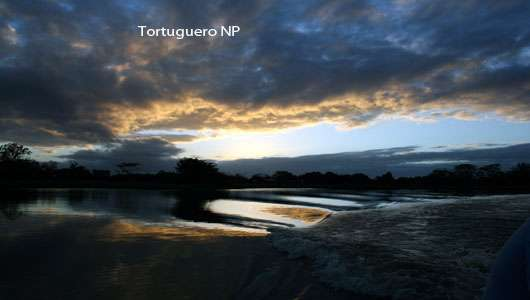 travel tortuguero national park